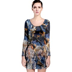 Frost Leaves Winter Park Morning Long Sleeve Bodycon Dress