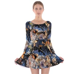 Frost Leaves Winter Park Morning Long Sleeve Skater Dress
