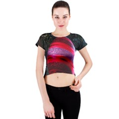 Glass Ball Decorated Beautiful Red Crew Neck Crop Top