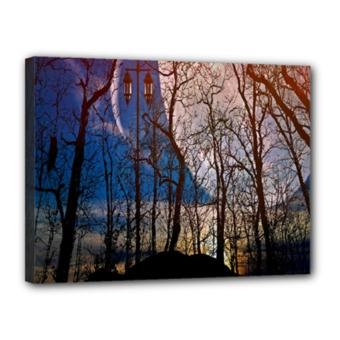 Full Moon Forest Night Darkness Canvas 16  x 12
