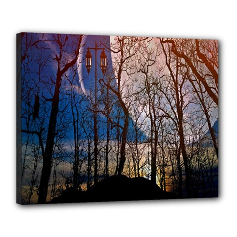 Full Moon Forest Night Darkness Canvas 20  x 16