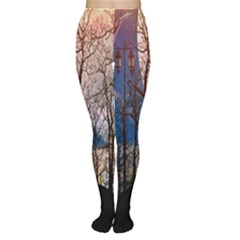 Full Moon Forest Night Darkness Women s Tights
