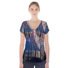 Full Moon Forest Night Darkness Short Sleeve Front Detail Top
