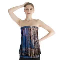 Full Moon Forest Night Darkness Strapless Top