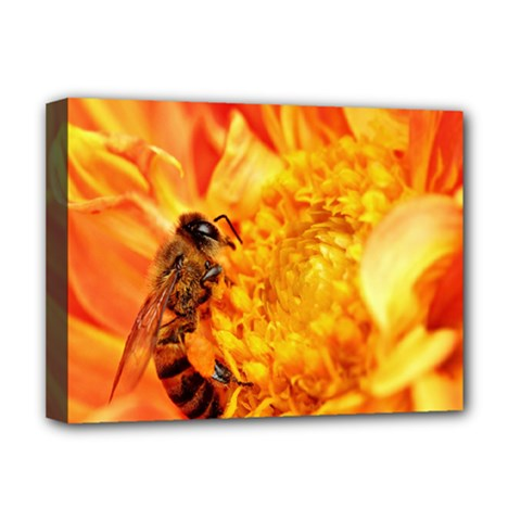 Honey Bee Takes Nectar Deluxe Canvas 16  x 12