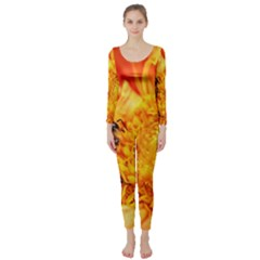 Honey Bee Takes Nectar Long Sleeve Catsuit