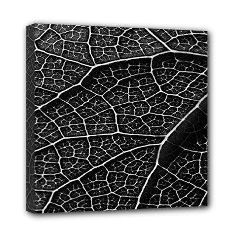 Leaf Pattern  B&w Mini Canvas 8  x 8