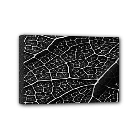 Leaf Pattern  B&w Mini Canvas 6  x 4