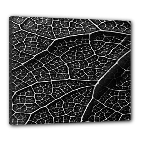 Leaf Pattern  B&w Canvas 24  x 20