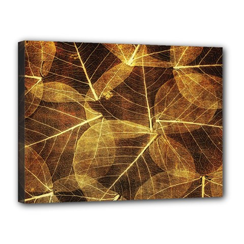 Leaves Autumn Texture Brown Canvas 16  x 12