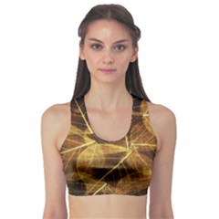 Leaves Autumn Texture Brown Sports Bra