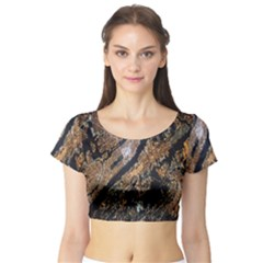 Night View Short Sleeve Crop Top (tight Fit)