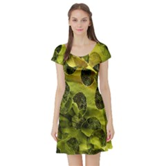 Olive Seamless Camouflage Pattern Short Sleeve Skater Dress
