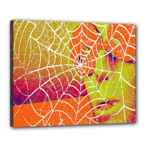 Orange Guy Spider Web Canvas 20  X 16