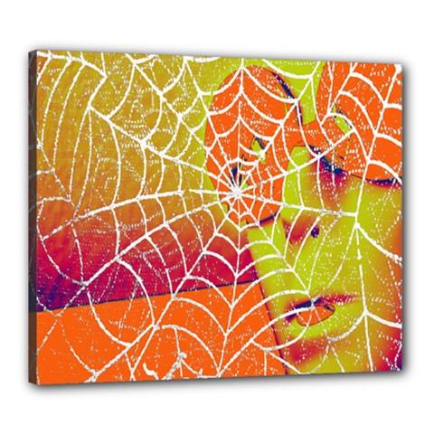 Orange Guy Spider Web Canvas 24  x 20