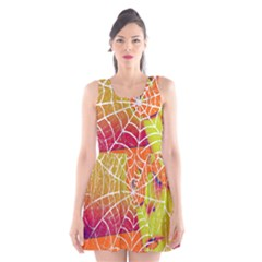 Orange Guy Spider Web Scoop Neck Skater Dress