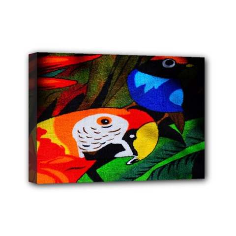 Papgei Red Bird Animal World Towel Mini Canvas 7  X 5