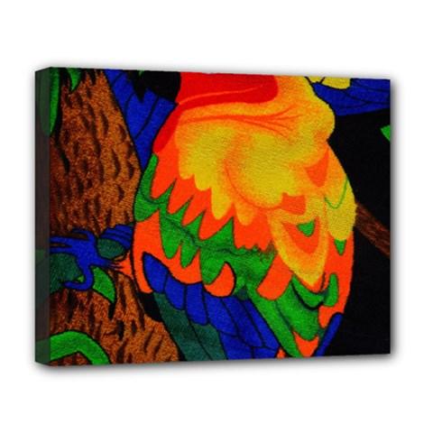Parakeet Colorful Bird Animal Deluxe Canvas 20  x 16