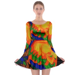 Parakeet Colorful Bird Animal Long Sleeve Skater Dress