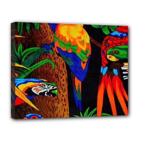 Parrots Aras Lori Parakeet Birds Canvas 14  X 11