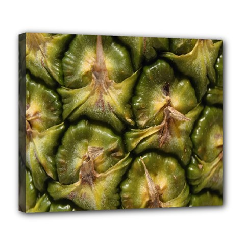 Pineapple Fruit Close Up Macro Deluxe Canvas 24  X 20