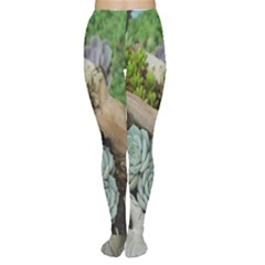 Plant Succulent Plants Flower Wood Women s Tights