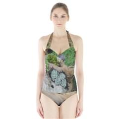 Plant Succulent Plants Flower Wood Halter Swimsuit