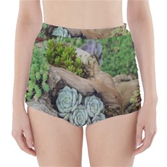 Plant Succulent Plants Flower Wood High Waisted Bikini Bottoms