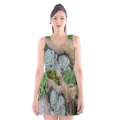 Plant Succulent Plants Flower Wood Scoop Neck Skater Dress