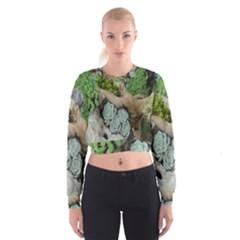 Plant Succulent Plants Flower Wood Women s Cropped Sweatshirt