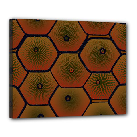 Psychedelic Pattern Canvas 20  x 16