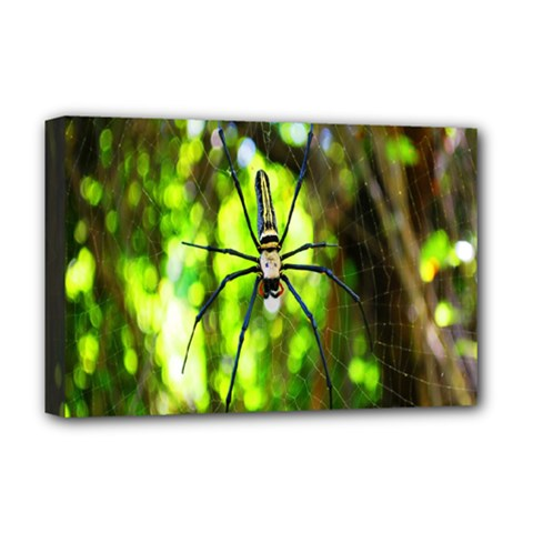 Spider Spiders Web Spider Web Deluxe Canvas 18  x 12