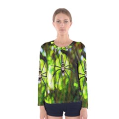 Spider Spiders Web Spider Web Women s Long Sleeve Tee