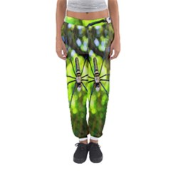 Spider Spiders Web Spider Web Women s Jogger Sweatpants