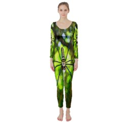 Spider Spiders Web Spider Web Long Sleeve Catsuit