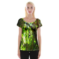 Spider Spiders Web Spider Web Women s Cap Sleeve Top