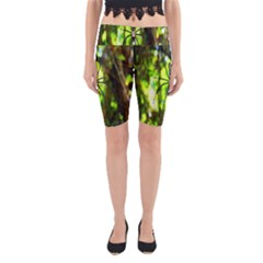 Spider Spiders Web Spider Web Yoga Cropped Leggings