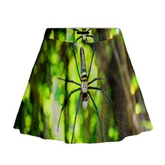 Spider Spiders Web Spider Web Mini Flare Skirt