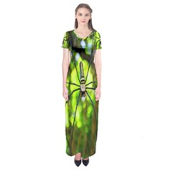 Spider Spiders Web Spider Web Short Sleeve Maxi Dress