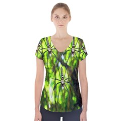 Spider Spiders Web Spider Web Short Sleeve Front Detail Top