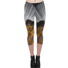 Spring Bird Feather Turkey Feather Capri Leggings