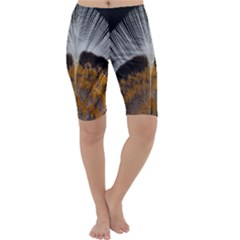 Spring Bird Feather Turkey Feather Cropped Leggings