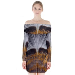 Spring Bird Feather Turkey Feather Long Sleeve Off Shoulder Dress