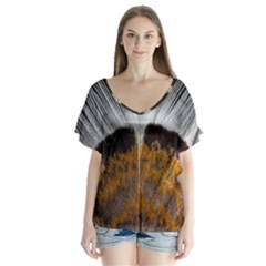 Spring Bird Feather Turkey Feather Flutter Sleeve Top