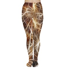 Star Golden Christmas Connection Women s Tights