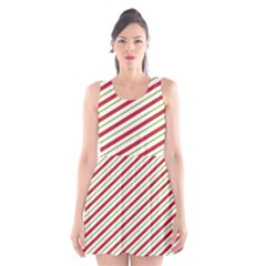 Stripes Striped Design Pattern Scoop Neck Skater Dress