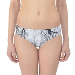 Tree Knots Bark Kaleidoscope Hipster Bikini Bottoms
