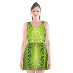 Vector Chirstmas Tree Design Scoop Neck Skater Dress