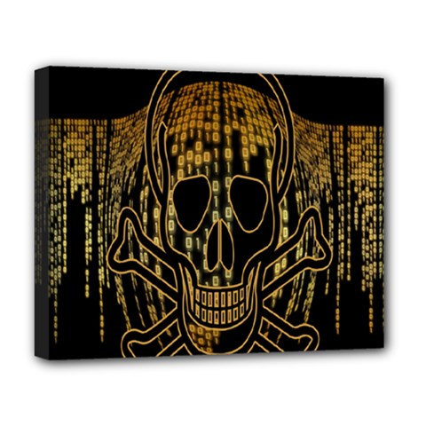Virus Computer Encryption Trojan Deluxe Canvas 20  x 16