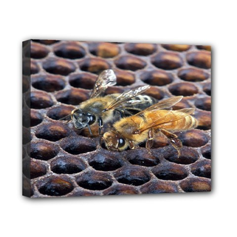 Worker Bees On Honeycomb Canvas 10  x 8